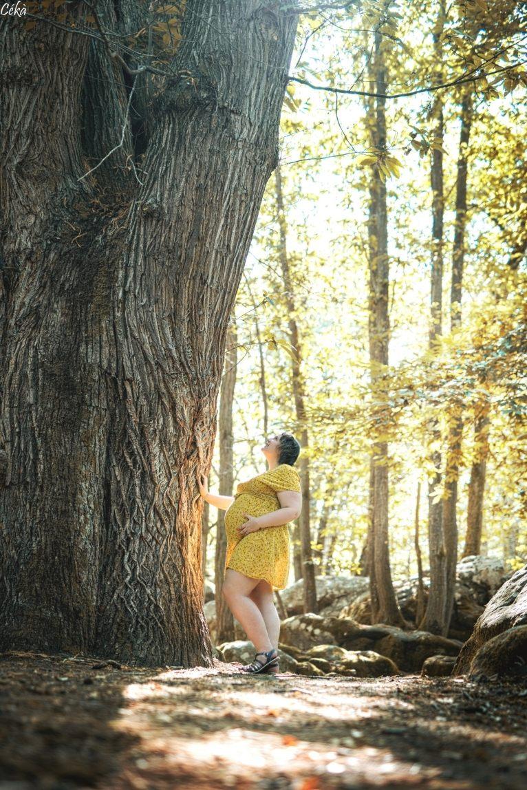 Portrait Grossesse Forêt