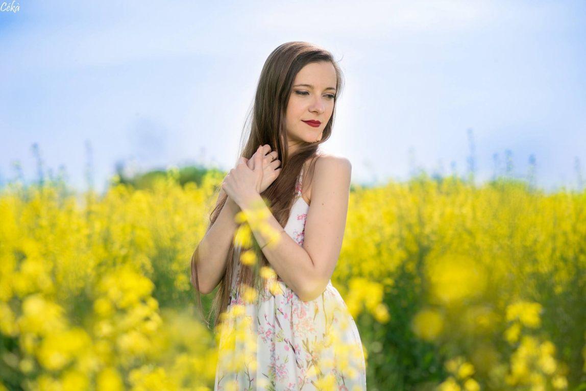 Portrait champ colza fleur